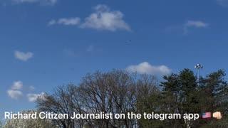 4 Osprey Spotted - Richard Citizen