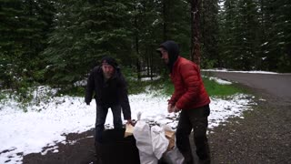 Hiking And Camping With Foresty Forest