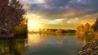 Relax Library: Video 51.Autumn River slowly moving birds singing