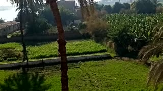 See the nature from above my home, Egypt