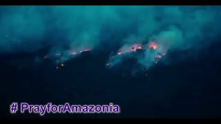 The Most Severe Forest Fire : Amazon Rainforest
