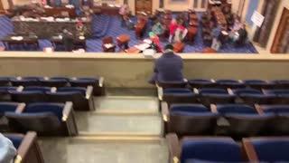 Protestors storm the US Senate floor