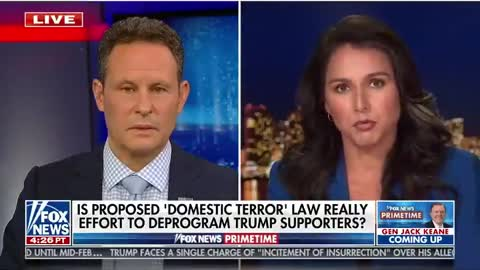 Tulsi Gabbard RIPS Brennan and Schiff For Wanting To Potentially Label Half The Country Terrorists