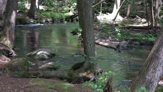 Beautiful waterfalls McClintock Park