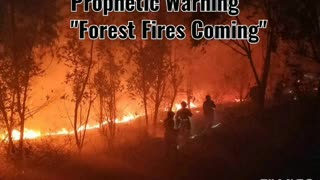 FOREST FIRES ARE COMING