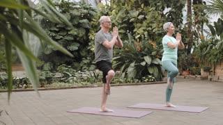 Couple Practicing Yoga Togethre