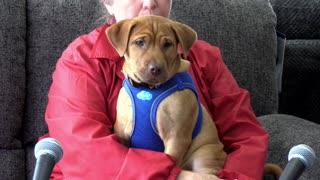Pet Of The Week: Titan!