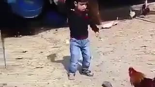 Rooster running after the boy who is terrified of animals