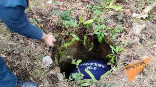 Сотрудники МЧС Абхазии спасли двух собак