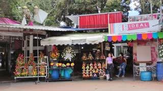 Así se celebra el amor y la amistad desde el Parque Romero de Bucaramanga
