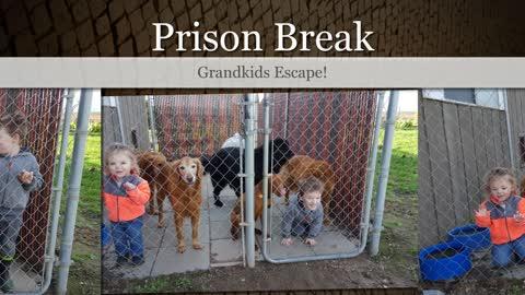 Prison Break - Grandkids Escape!