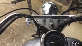2005 Honda Shadow Mint By Mike Green