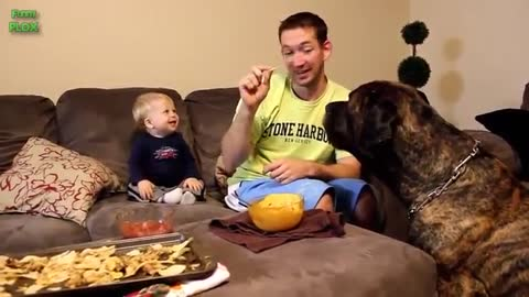 Funny Babies Laughing new videos