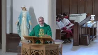 Sunday Mass - Octave Of the Sacred Heart of Jesus - Homily