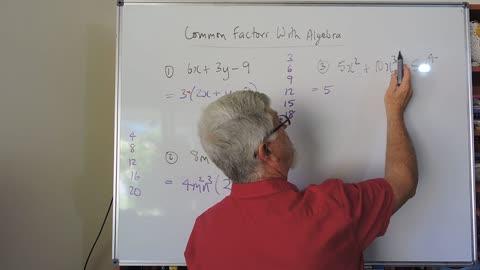 Math Factor Set A 04 Common Factors More Cases