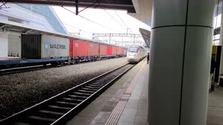 The train coming into the station