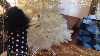 Decorating Christmas Tree | Step Into Christmas