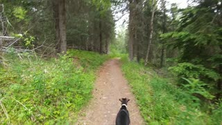 Trail Running with Queen