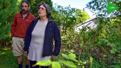 Grandma caught with marijuana plant in Massachusetts