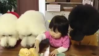 BABY SHARING FOOD WITH DOG