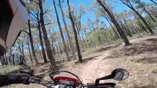 CRF450L Random Ride