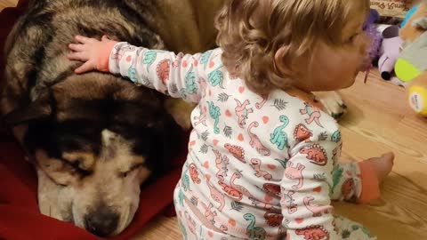 Little girl and her puppy dog...