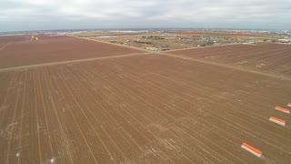 Winter cotton field 3