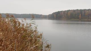 Peaceful Lake Landscape