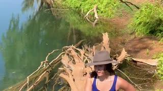 Close Encounter with a Hidden Saltwater Crocodile