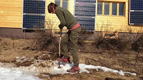 Nordic Nature Treat #19