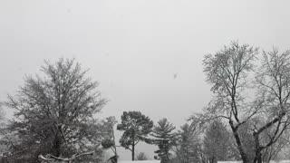 Snow Falling in Slo-Motion