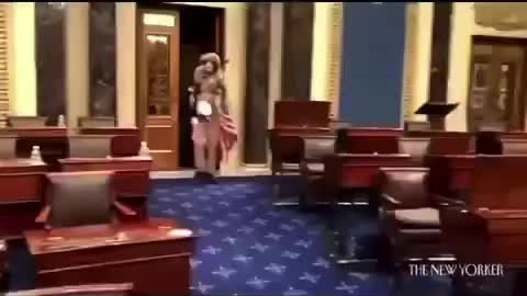The so called Capitol attack!