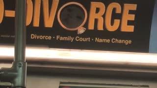 Divorce attorney advertisement has hidden cat