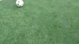 The best football player 2021