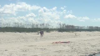 Island Hopping on Cayo Costa State Park, Florida