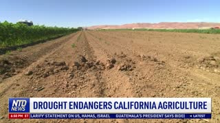 Drought Endangers California Agriculture