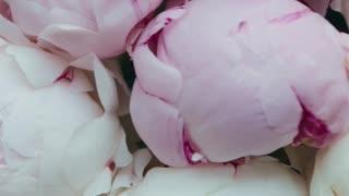 flowers beatfile