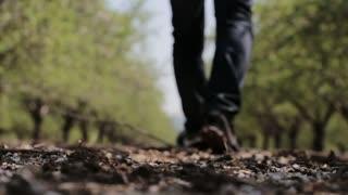 Walking Wal change life