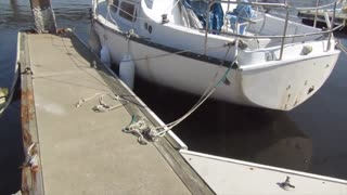 Aftermath of Hurricane Dorian on S/V Gypsea Girl