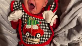 Coolest yawn on the web