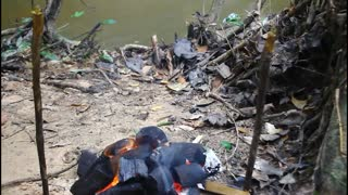Cooking Chicken BBQ Recipe Eating So Yummy - Grilled Chicken Meat BBQ in Jungle