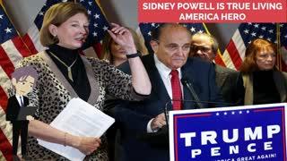 Sidney Powell a True American Hero