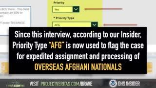 DHS Whistleblower - Project Veritas