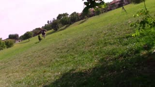 Guard Dog Training!