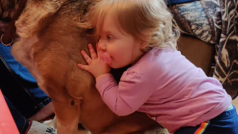 Puppy Loving