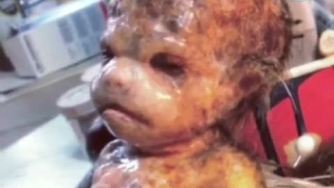 Is this a alien baby ?
