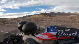 Dog Travels the World by Motorcycle