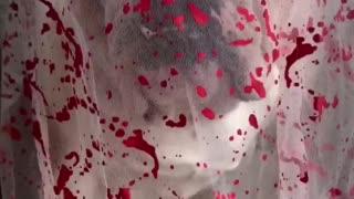 English Bulldog Bloody Bride Halloween