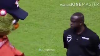 Stadium Security Takes On Mascot