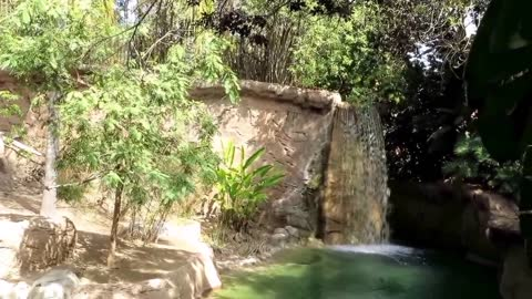 Waterfall At The Zoo